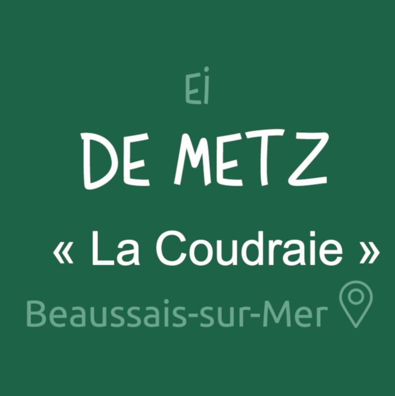 Robert DE METZ
